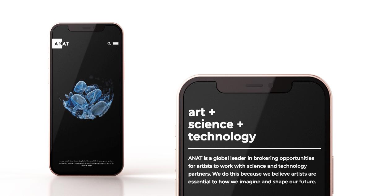 Logo Design, Website Design, Branding, ANAT, Black Squid Design
