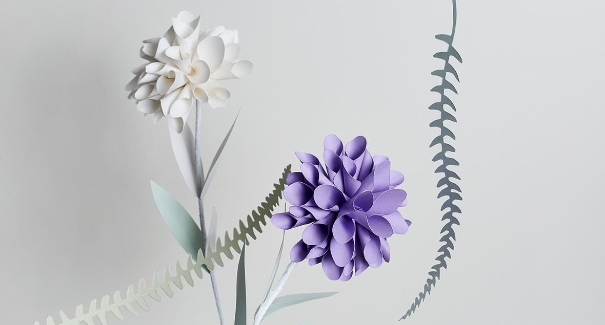 One Seed, Craft, Paper Flowers, Black Squid Design