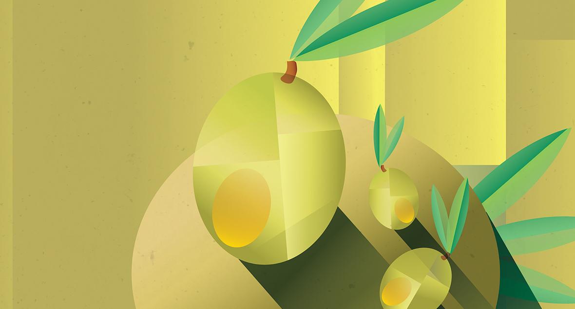 Rio Vista Olives, Illustration, Label Design, Black Squid Design