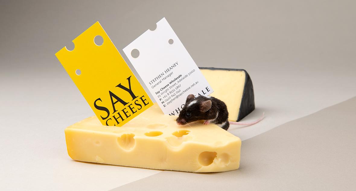 Say Cheese Wholesale, Logo Design, Business Card Design, Black Squid Design